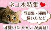 2月22日は猫の日!かわいいネコ本大集合