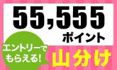 もれなくもらえる!55,555ポイント山分けキャンペーン