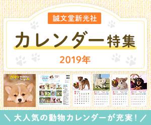 誠文堂新光社 2019年カレンダー特集