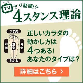 TV話題!4スタンス理論