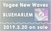 """3枚目のフル・アルバム『BLUEHARLEM』について、 """"Yogee New Waves""""さんに聞きました!"""