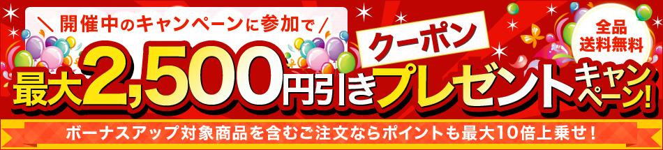 最大2,500円引きクーポンプレゼントキャンペーン!