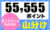 55,555ポイント山分けキャンペーン