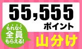エントリーするだけ!楽天ブックス55,555ポイント山分けキャンペーン