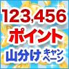 123,456ポイント山分けキャンペーン**