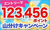 123,456ポイント山分けキャンペーン