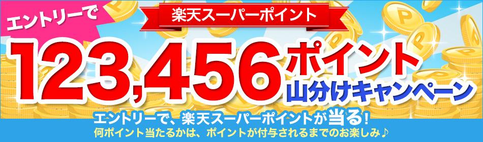 【楽天ブックス】123,456ポイント山分けキャンペーン