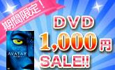 DVD1枚1000円のDVD大集合!