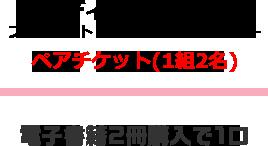 東京ディズニーランド プライベート・イブニング・パーティー ペアチケット(1組2名)