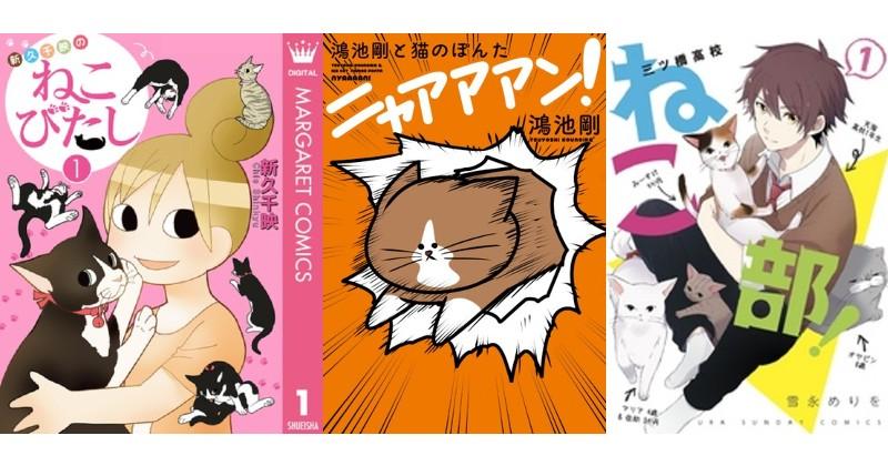 かわいいから仕方がない!うちの子にふり回される漫画オススメ5選【猫編】